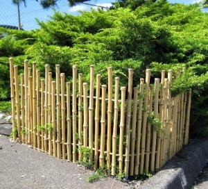 Five styles of picket fences