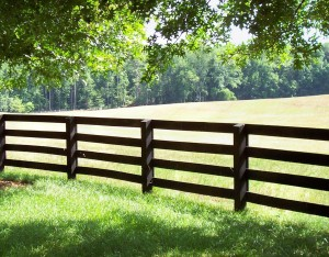 Various types of rail fences