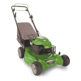 Buying a gas powered rotary mower