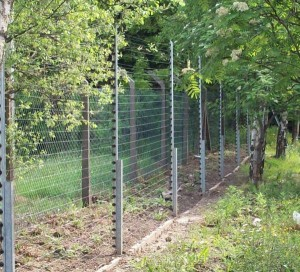 The purpose of electric fences