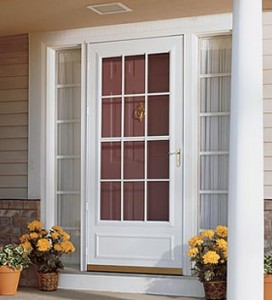 Alternatives to storm doors with full view