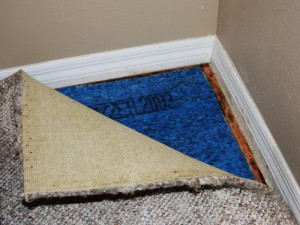 Removing mildew odors from carpets