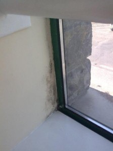 Preventing mildew from growing on windows