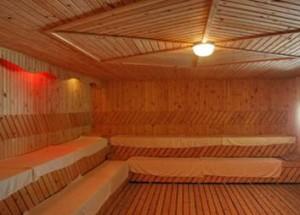 Escolhendo a madeira sauna
