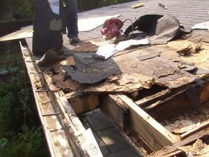 Manipolazione tetti che perde