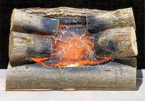 Decorative fireplace logs