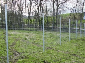 About deer fences