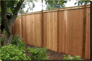 Treating cedar fence boards