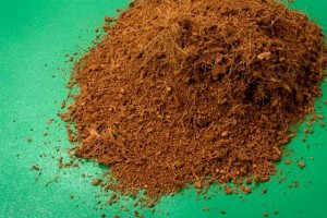 What is Coco Coir?