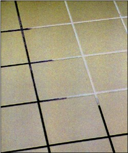 Cleaning mildew from shower tiles