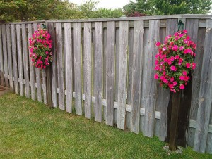 Hanging flower pots for fences