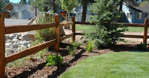 Choosing wood for split rail fence