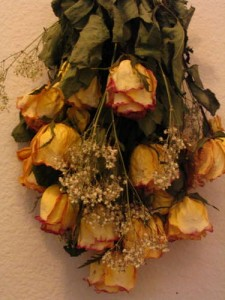 How to dry fresh roses