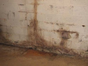 Reducing basement dampness