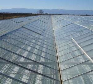 El vidrio para su invernadero