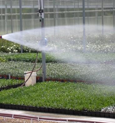 Greenhouse vattning misstag